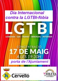 Dia Internacional contra la LGTBI-fòbia